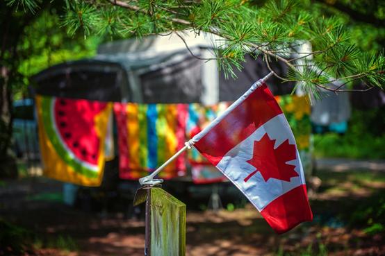 僑外加拿大移民:加拿大2019年移